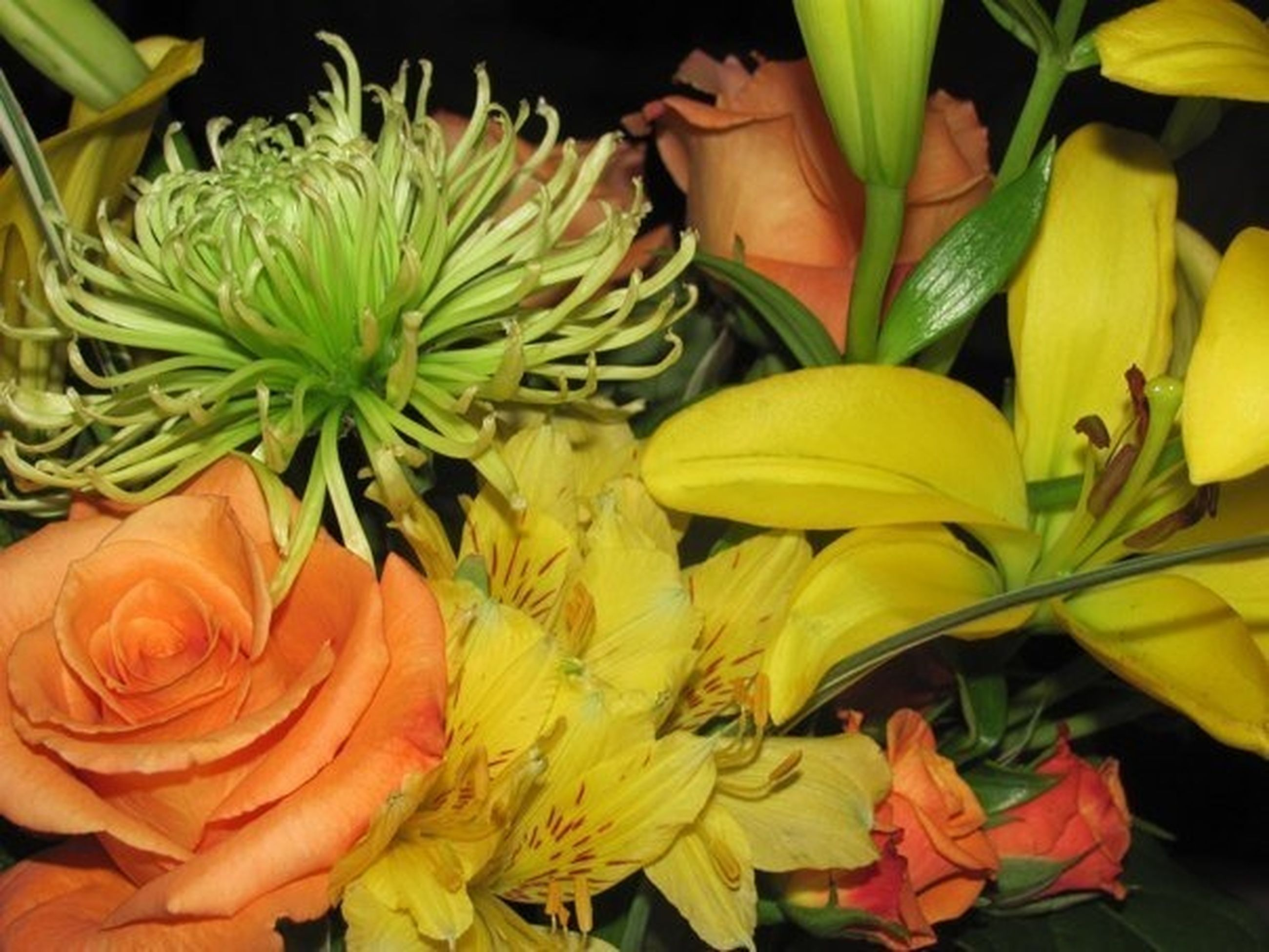 flower, freshness, petal, flower head, fragility, growth, plant, yellow, beauty in nature, high angle view, nature, blooming, leaf, close-up, potted plant, no people, indoors, green color, in bloom, orange color