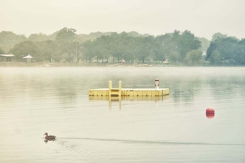 Foggy mornings Water Nature Lake Tranquility Scenics Beauty In Nature Tranquil Scene Outdoors Leisure Activity