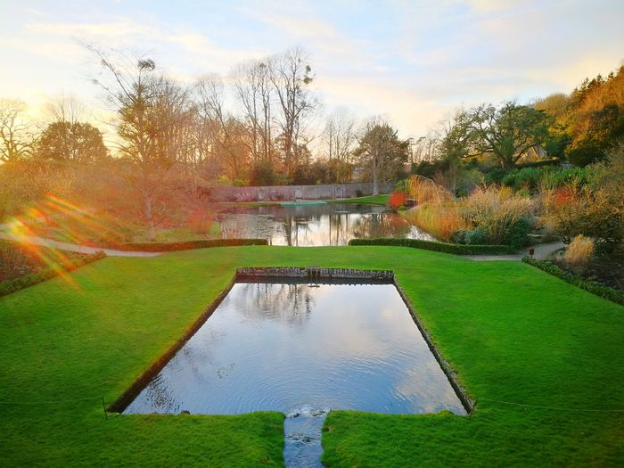 Garden Feature Garden Pond Man Made Lakes Perennial Borders Winter Colour Sunlight Reflections On Water Sky Reflected On Water Tree Water Outdoors Nature Growth Day No People Grass Sky Beauty In Nature