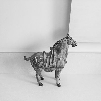 The cute horse.. Instaasterinasazalie Asterinasazalie Instagram Instamoment lifewithoutcolors moment instaanimal animal thehorse horse ppkibp vivatel smkdp pretty awesome perfect