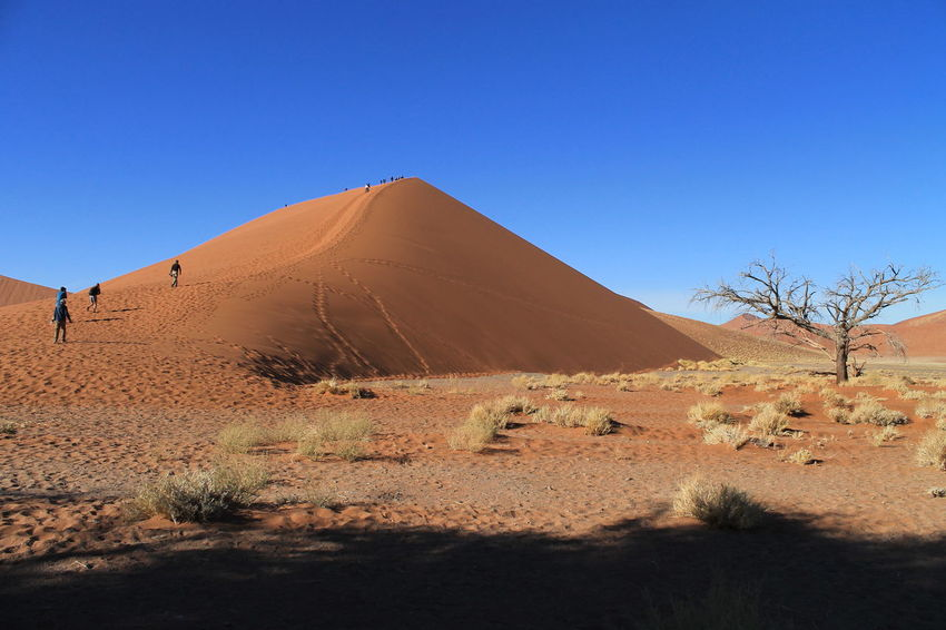 Namibia Sossusvlei Arid Climate Beauty In Nature Blue Clear Sky Day Desert Geology Landscape Nature Outdoors Sand Sand Dune Scenics Sky Sunlight Tourism Tranquil Scene Travel Destinations