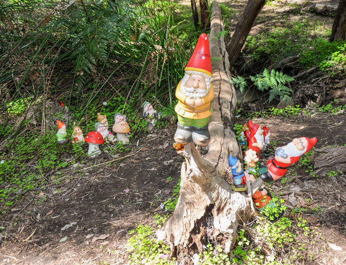Detail at the whimsical Gnomesville forest in Wellington Mill, Western Australia. Collection Colorful Fantasy Ferguson Valley Figurines  Forest Garden Gnomes Gnomes Gnomesville Human Representation Multi Colored Non-urban Scene Outdoors Quirky Silly Tourist Attraction  Travel Destinations Tree Trunk Trees Vibrant Color Wellington Mill Western Australia Whimsical WoodLand Woods