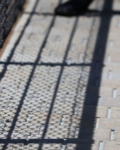 Bridge Swing Bridge Day Shadow Sunlight High Angle View Close-up Focus On Shadow LINE Backgrounds Pattern Textured  Detail Architectural Detail Abstract Backgrounds Long Shadow - Shadow Architectural Design