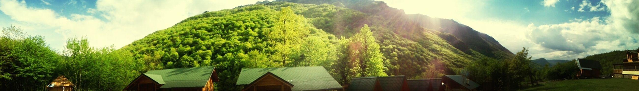 Beutiful  EyeEm Nature Lover Green