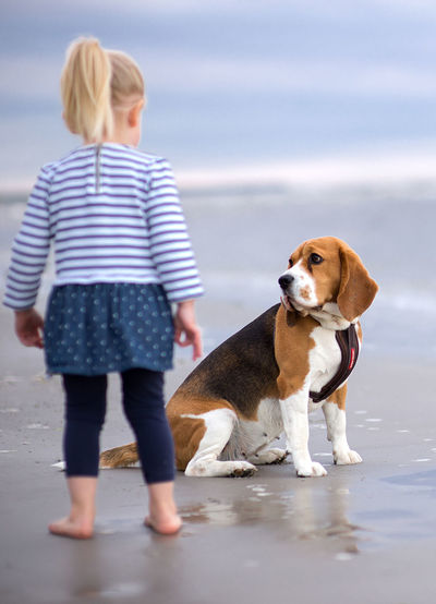Little girl and her beagle dog on the beach Animal Themes Beagle Beagle Love Blond Hair Casual Clothing Childhood Day Dog Domestic Animals Full Length Girl Horizon Over Water Leisure Activity Litlle Mammal Nature One Animal One Person Outdoors Pets Real People Sea Sky Standing Water