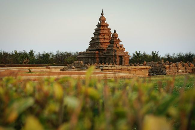 The Magic Mission Mahabalipuram, India Shoretemple Sunset Solitude Architecture Clear Sky