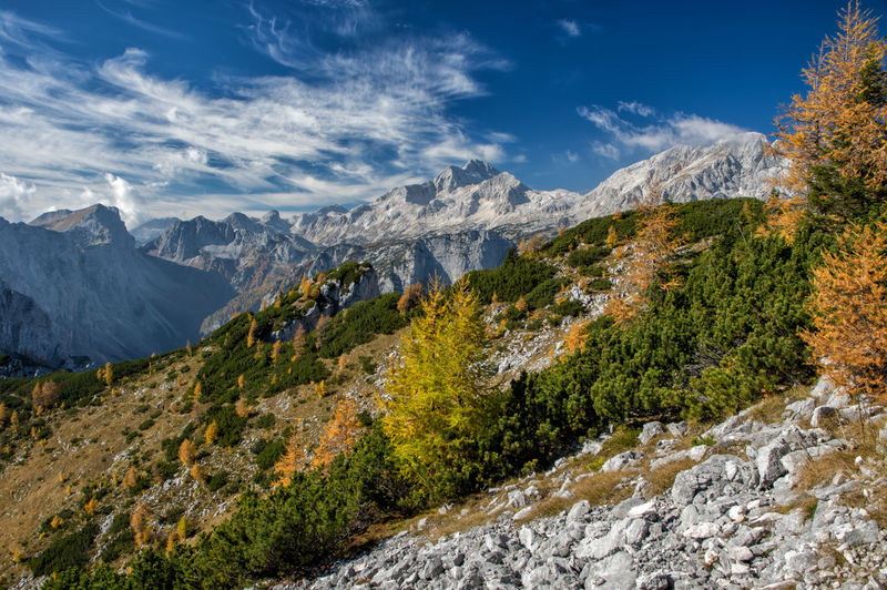 Autumn in Julian Alps in Slovenia, with view of Triglav Mountain Scenics - Nature Beauty In Nature Sky Plant Environment Tree Nature Landscape Tranquility Tranquil Scene Cloud - Sky Mountain Range Day No People Non-urban Scene Land Outdoors Remote Valley Flowing Water Mountain Peak Slovenia Hike Triglav National Park