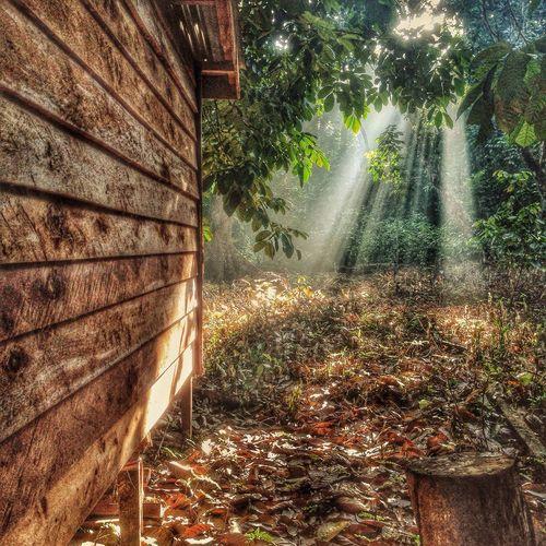 Summer Views INDONESIA Ipone Pontianak Kalimantan Barat  Protecting Where We Play