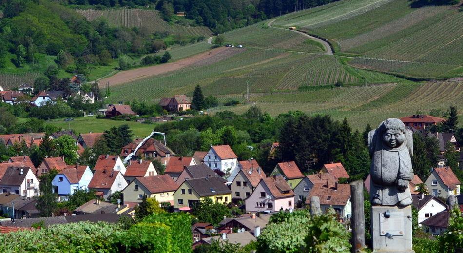 Quiet Places Statue Agriculture Farm French Village Route Des Vins Rural Scene Travel Destinations Wine Region