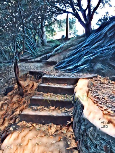 Put through a filter , this stairway is part of Wildcat Canyon Alvarado Area. Richmond CA