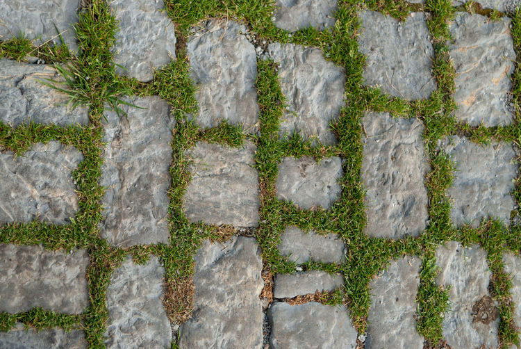 pawing stone