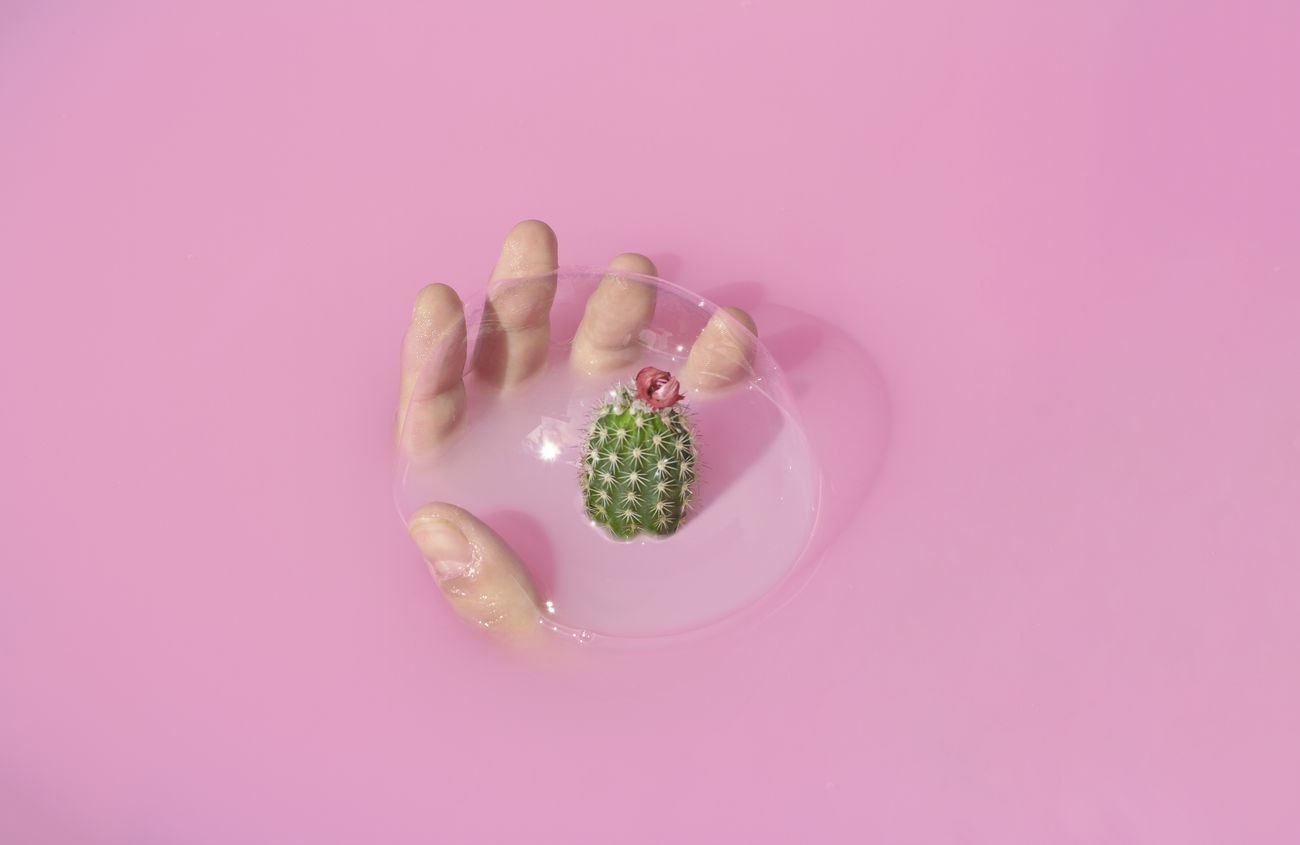 studio shot, food and drink, food, pink color, human hand