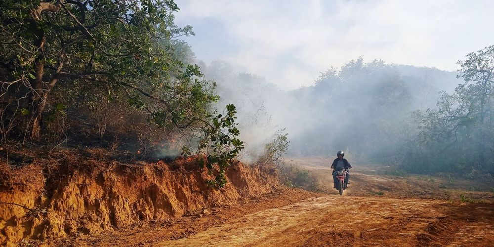 Monitoring hotspots at forest and land fires