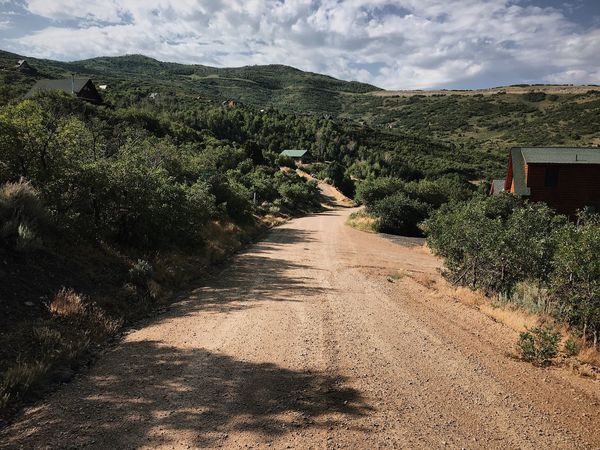 heavy rains last night. the road is always a pleasure to run on after a good soaking. Mountain Road Wasatch County Utah Wasatch Back Sky Plant Cloud - Sky Tree Nature No People Sunlight