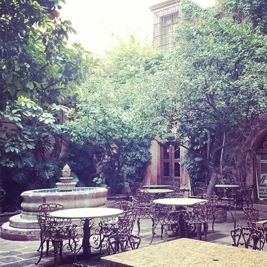 Ayer en San Miguel de Allende... Travelphotography A Place To Relax Patio Fuente Por La Tarde