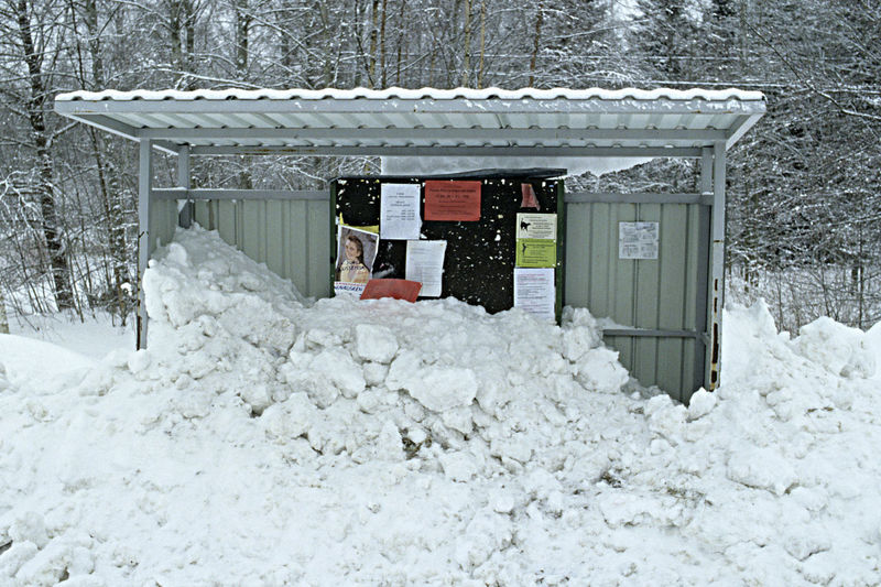 A Bus Stop Shelter Full Of Snow An Absurd Situtaion Building Exterior Built Structure By The Roadside Cold Temperature Day No People Outdoors Snow Snowing Waiting For The Bus Where To Sit? Winter