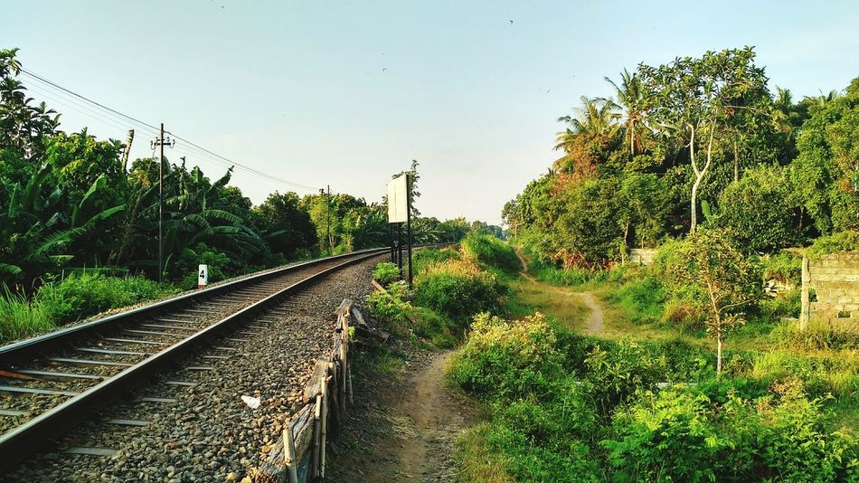 """"""" another path :) _ flic.kr/p/Ly5R7P _ Railroad Track The Way Forward Green Color Journey Vanishing Point Railway Track Non-urban Scene Rail Transportation Outdoors Nature Curve Diminishing Perspective Path In Nature Paths Of Life Pathways Rail"""