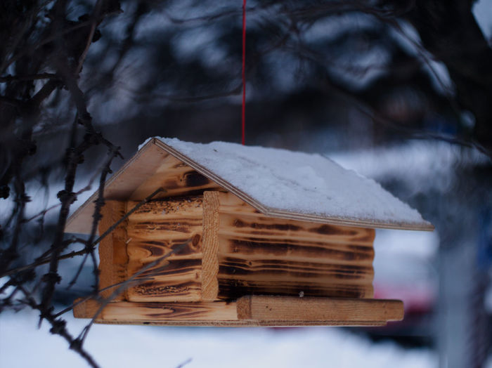 Snowy birdhouse Nature Hanging Tree Bokeh Winter Snow Day Frozen Cold Birdhouse Plant Bird House Swirly No People Covering Selective Focus Blurry Background Swirly Bokeh Focus On Foreground Wood - Material Cold Temperature Gh5 Helios 44-2 Outdoors