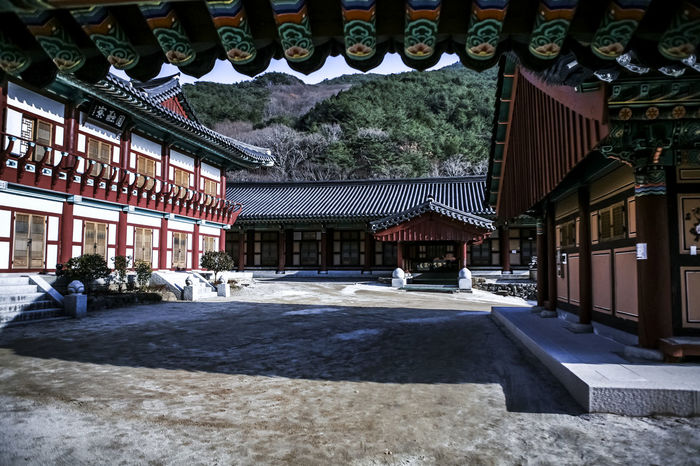 Architecture Buddhism Buddhist Temple Building Exterior Built Structure City Life Day Exterior Façade House Hwaeomsa Temple Lawn Leading Mediation Narrow Outdoors Residential Building Residential Structure Roof Street The Way Forward Town Tranquility Tree Urban