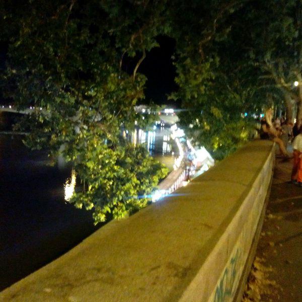 Tree Night Illuminated Nature Road Outdoors Storical Place Roma Rome Tiber River River