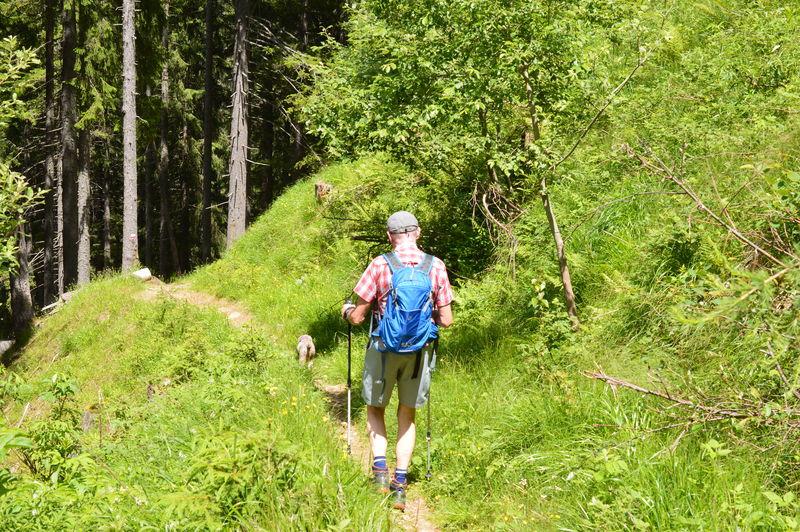 Full length of man walking in forest in southtyrol
