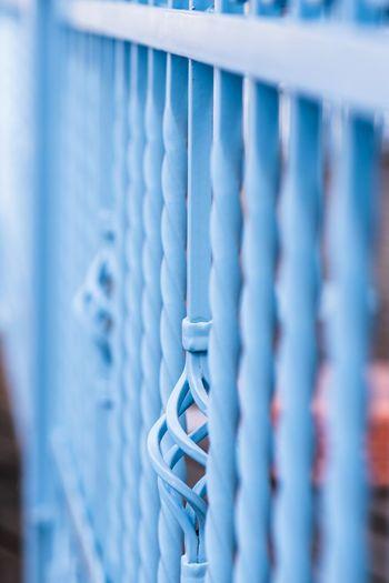 Blue fence Soft