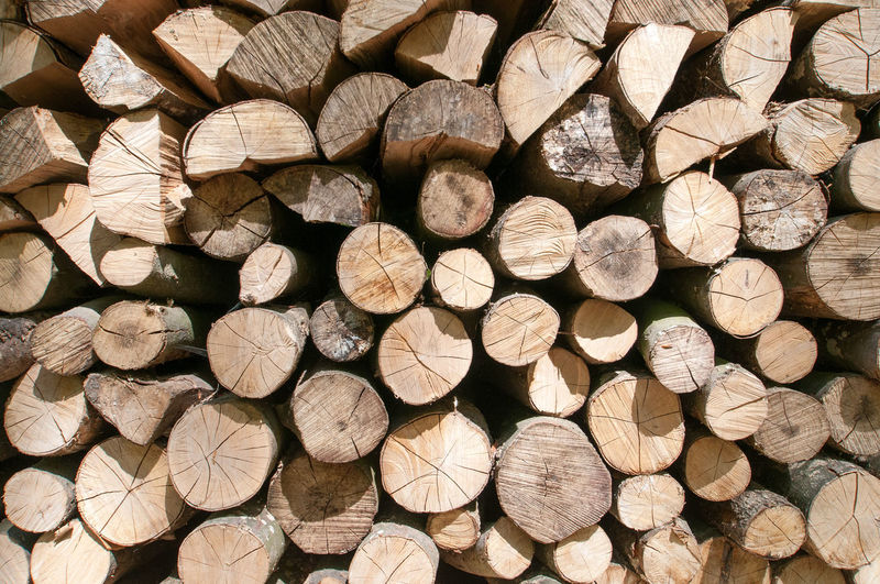 Abundance Arrangement Backgrounds Close-up Day Deforestation Forestry Industry Fuel And Power Generation Full Frame Heap Large Group Of Objects Log Lumber Industry No People Outdoors Pattern Stack Stack Of Wood Textured  Timber Wood - Material Woodpile