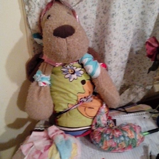 This is Mr. Ruffles . I've had him sense I was eight. My little sister decided that he needed some clothes and a name change. We took some fabric and tied it where she wanted it. His names Mr. Pinky Pie Ruffles. He's a tranny apparently. Littlesister Stuffedanimal Playing Tranny adorable