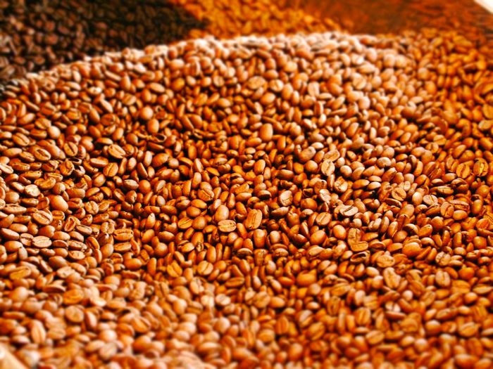 Fair Trade Coffee Abundance Backgrounds Cereal Plant Close-up Coffee Bean Roaster Coffee Beans Day Food Food And Drink Freshness Healthy Eating Indoors  Large Group Of Objects No People Selective Focus
