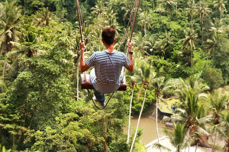 Indonesia_photography Travel Destinations Bali, Indonesia Forest Photography Forest Swing Outdoor Play Equipment Chain Swing Ride Playground Slide - Play Equipment Rope Swing My Best Photo