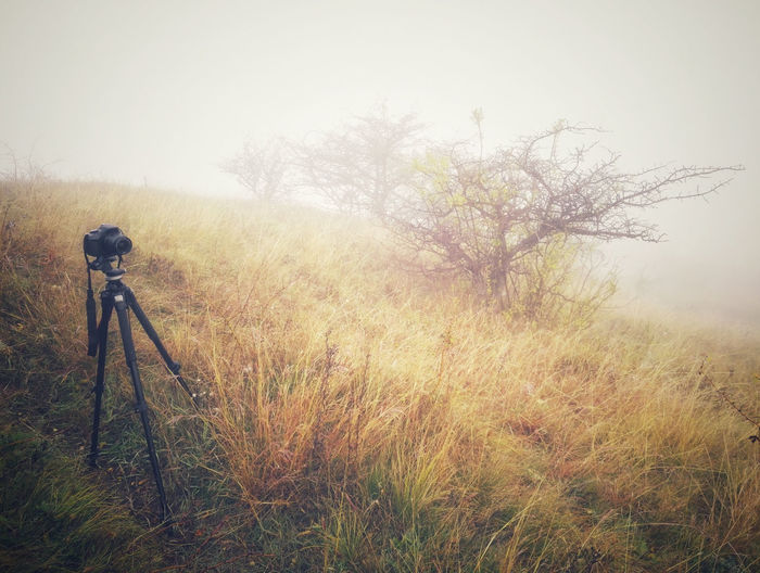Camera - Photographic Equipment Foggy Autumn Morning Foggy Fall Morning Foggy Fall Morning... Foggy Weather HillTopView Hungary Hungary Photos MorningPhoto Photoshoot Photoshooting Silent Hill In Real Life Fog Foggy Foggy Autumn Day Foggy Hills Foggy Hillside Foggy Morning Hills And Valleys Silent Hills Tokod