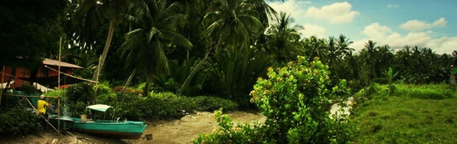 Kampung Sambir Pandang Sari Keindahan Alam Keindahan Natural View