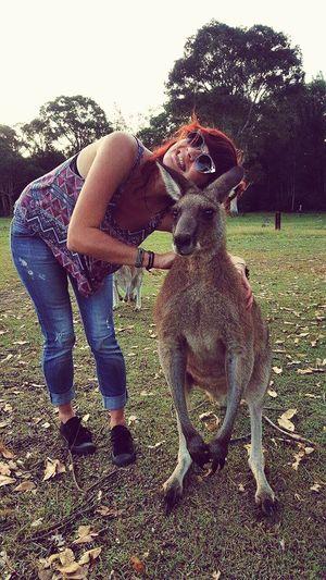 Australia Kangaroo Selfie Morisset Park Lovelife