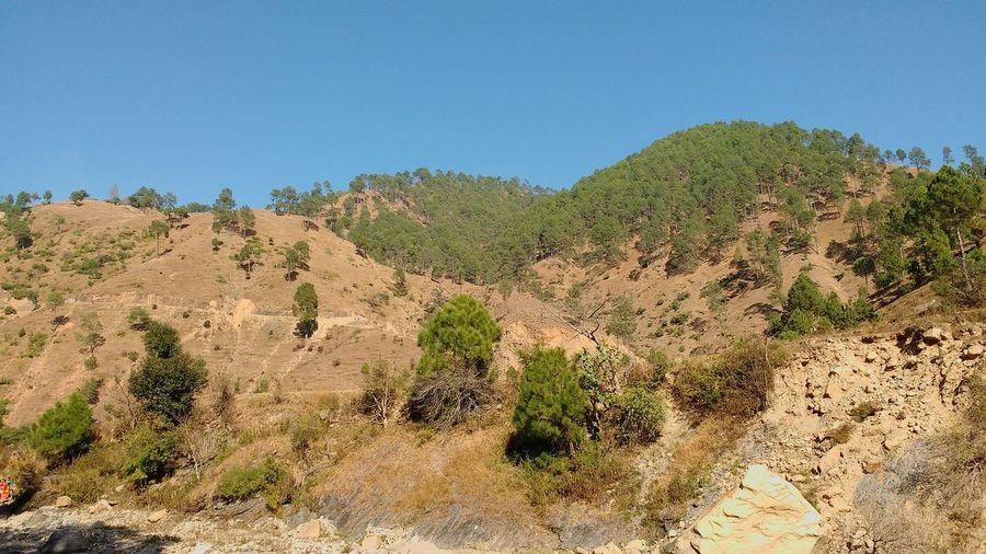 Landslide Rock