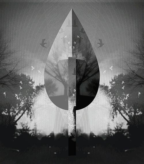 D3lta D3ltagraphy Blackandwhite Digital Art Pixlr