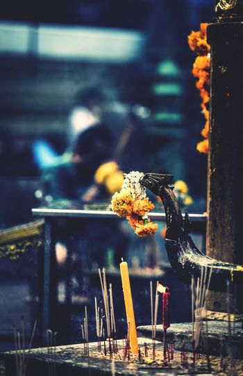 Burning Focus On Foreground Flame Heat - Temperature Outdoors Day Animal Themes Food No People Close-up Freshness Bird EyeEm Gallery EyeEm Nature Lover EyeEm Best Shots Beauty In Nature Nature