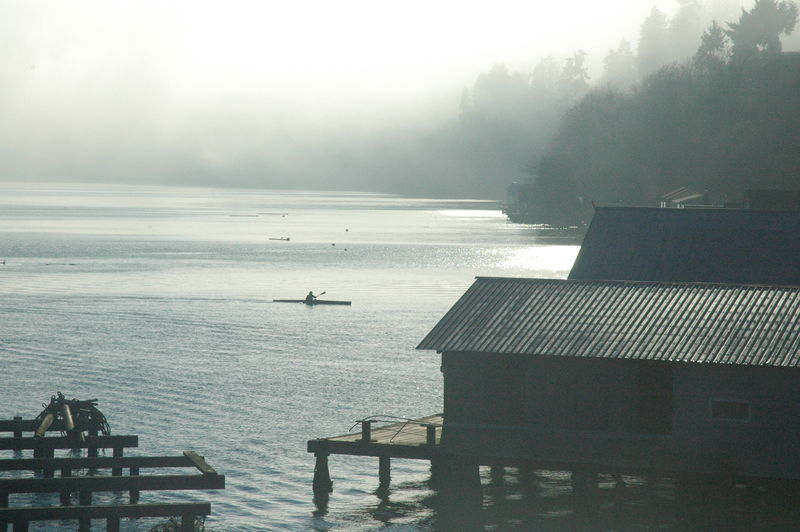 Bay Foggy Foggy Morning Kayaking Kayaking In Nature Nature Nature Photography Perfect Day Perfection Puget Sound