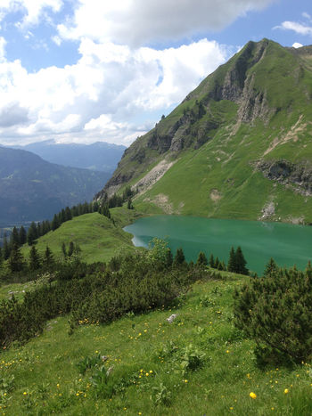 Alpensee Alpine Lake Bavaria Beauty In Nature Cloud - Sky Day Deutschland Germany Grass Green Color Growth Idyllic Lake Landscape Mountain Nature No People Outdoors Pine Scenics Sky Tranquil Scene Tranquility Tree Water