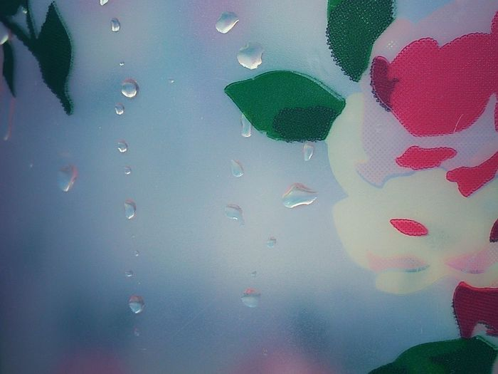 Backgrounds Full Frame Close-up Indoors  No People RainDrop Trough The Glass Glass Cool Temperature Rose - Flower Rose Pattern