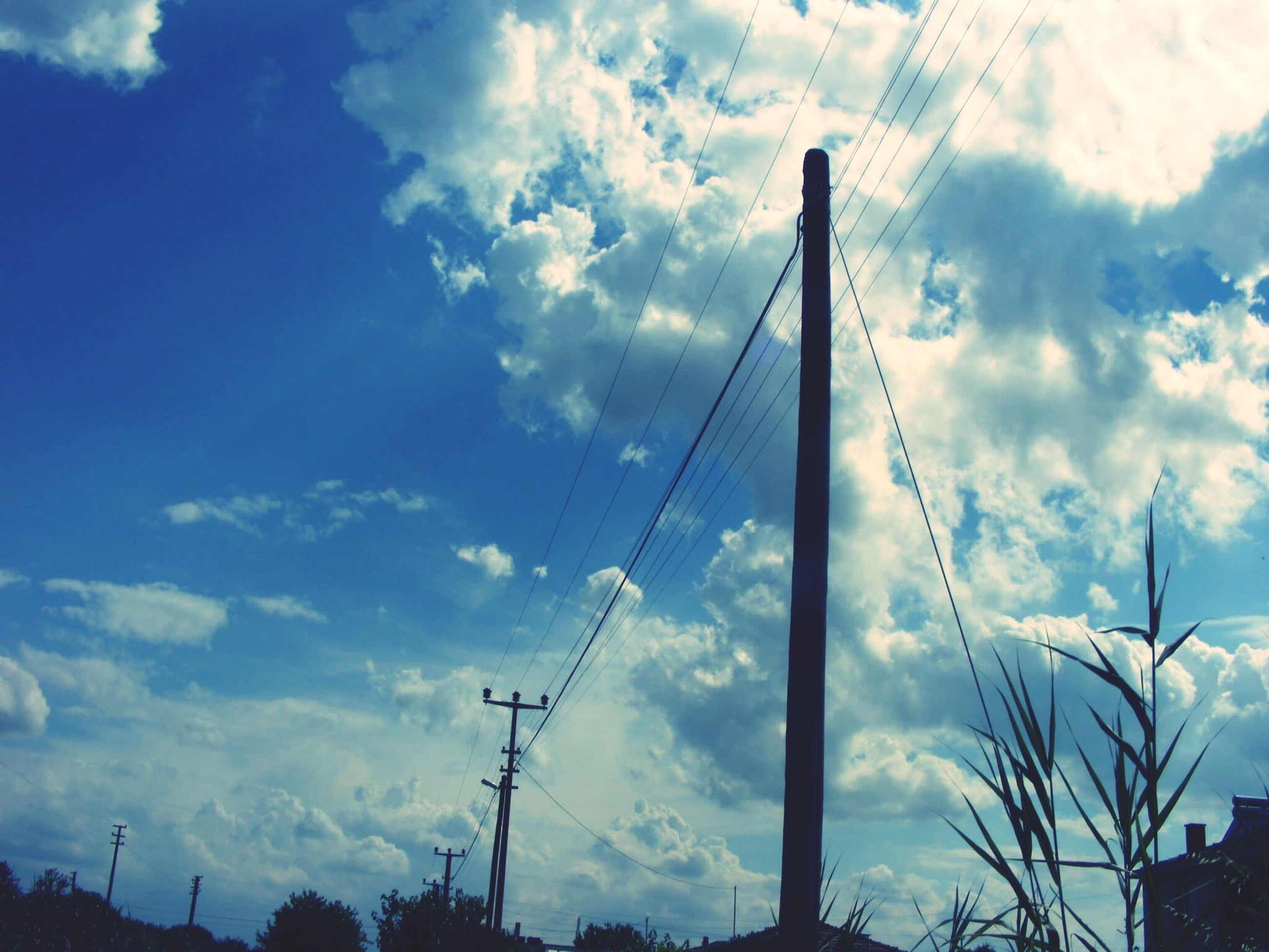 low angle view, electricity, connection, power line, sky, power supply, tree, electricity pylon, technology, cable, cloud, silhouette, blue, cloud - sky, day, nature, outdoors, tall - high, scenics, high section, treetop, telephone pole, electricity tower, telephone line, cumulus cloud, no people, tranquility, cloudy, tranquil scene, outline, beauty in nature
