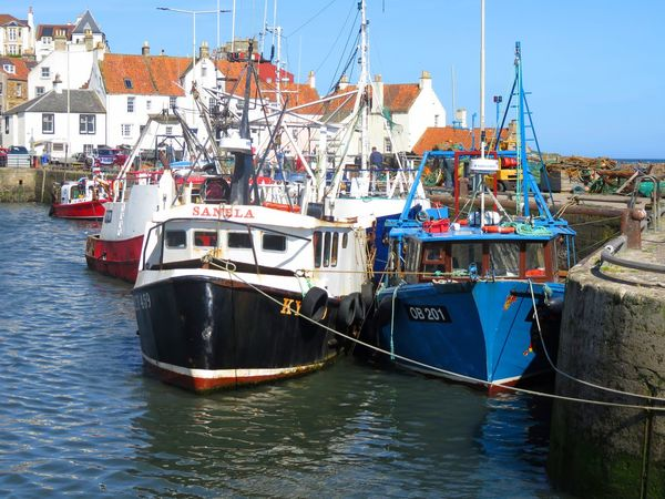 Boats in Pittenweem harbour. Fishing Village Blue Boat Clear Sky Day Harbor Mast Mode Of Transport Moored Nature Nautical Vessel No People Outdoors Pittenweem Sky Transportation Water