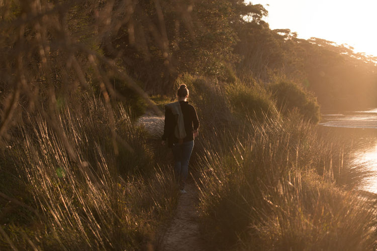 Rear view of person walking on land golden hour