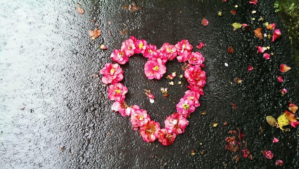 Cuckooflower Love ♥ On The Road Rainy Days Walking Around