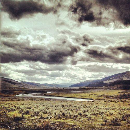 Lamarvalley Yellowstonenationalpark
