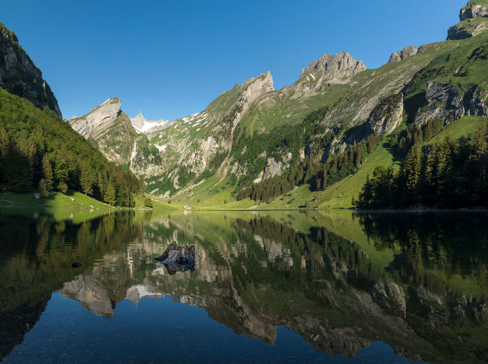 Alpstein Seealpsee Appenzell Beauty In Nature Blue Clear Sky Day Idyllic Lake Mountain Mountain Range Nature No People Non-urban Scene Outdoors Plant Reflection Scenics - Nature Sky Switzerland Tranquil Scene Tranquility Tree Water Waterfront
