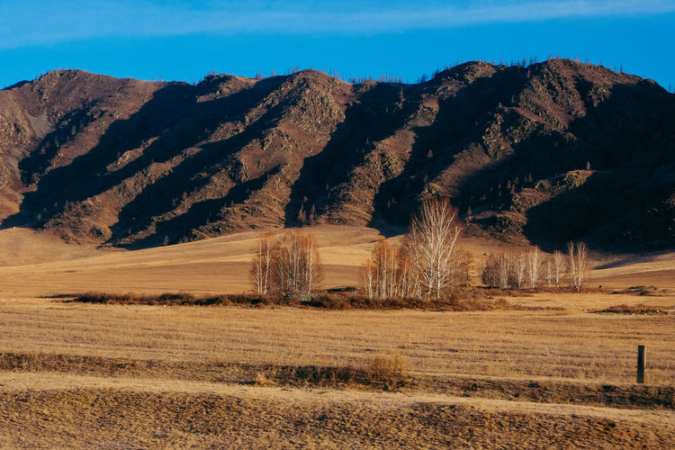 Arid Climate Beauty In Nature Clear Sky Day Field Landscape Mountain Nature No People Outdoors Scenics Sky Sunlight Tranquil Scene Tranquility Tree