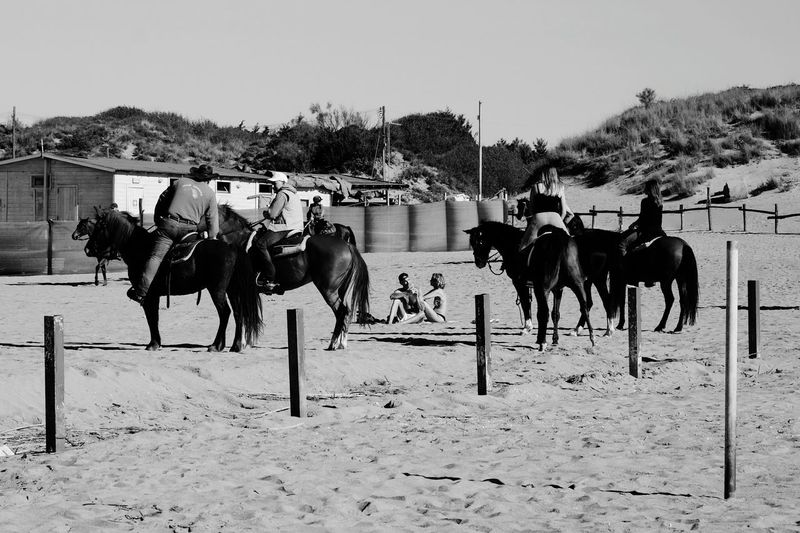 Horse Domestic Animals Animal Themes Sky Outdoors Day Adult Nature People Riding Streetphotography in a Beach Life Is A Beach Blackandwhite Black And White Black & White Blackandwhite Photography in Tirrenia Pisa Italy Tirrenia