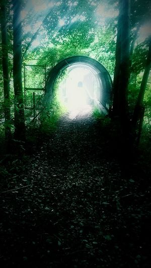 Tunnel Day Outdoors Hikingadventures Tranquility Peaceful Peace And Quiet