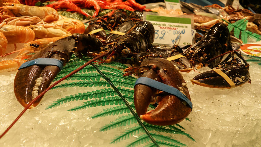 Lobsters on ice at market for sale