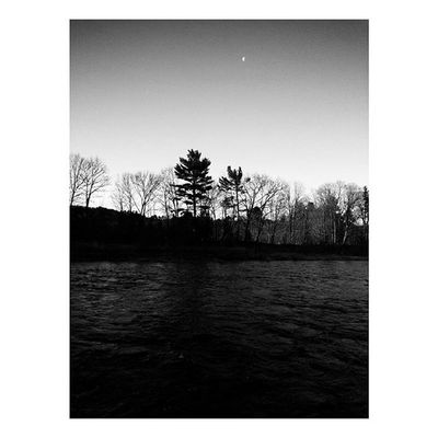 Lingering Moon . . . . . Nature Landscape Bnw_life Bnw Bnw_captures Newengland ClaremontNH Moon Morning Silhouette Mobilephotography Mobilephotography_nature Mobilephotographer Photooftheday Blackandwhite Monochrome Riverside Humpday Dark Film Woods Hiking Adventures Passion Printshop society6 trees country scenery sunrise